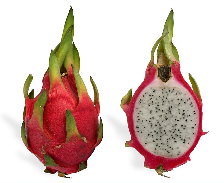 Dragon fruit cross section
